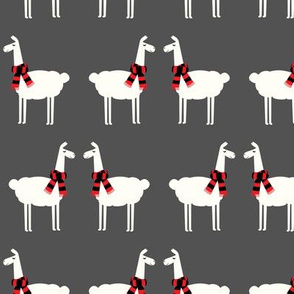llamas with scarfs - dark grey