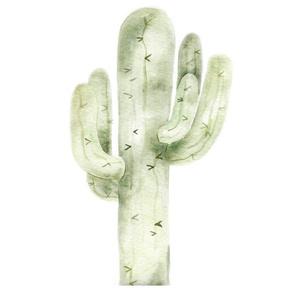 """Saguaro 18"""""""