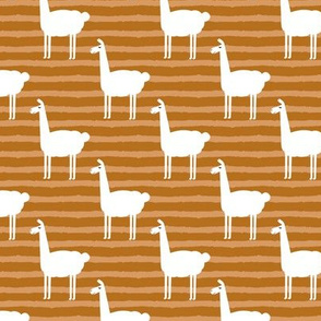 llamas on stripes - cider