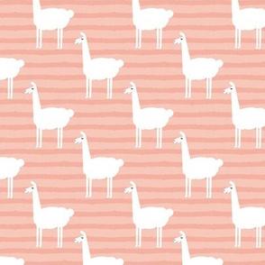 llamas on stripes - salmon peach
