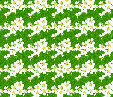 Strawberry_patch_blooms_and_leaves fabric by anino on Spoonflower - custom fabric