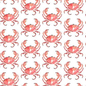 Crab Nautical Watercolor Small || Animal coral red orange white