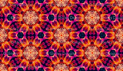 bohemian_rhapsody_geometric_design