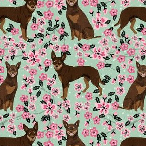 australian kelpie dog fabric red and tan kelpie design - cherry blossoms - mint