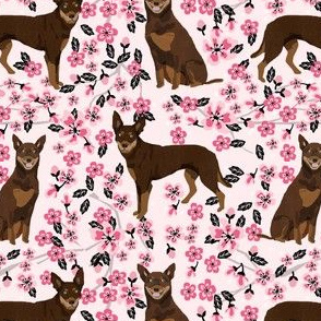 australian kelpie dog fabric red and tan kelpie design - cherry blossoms - pink
