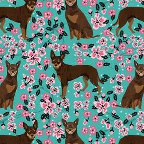 australian kelpie dog fabric red and tan kelpie design - cherry blossoms - turquoise