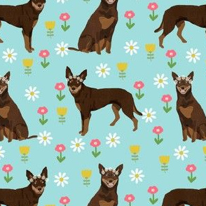 australian kelpie dog fabric red and tan kelpie design - daisies - light blue