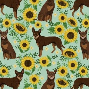 australian kelpie dog fabric red and tan kelpie design - sunflowers- mint