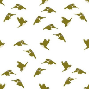 Flock of frolicking Waxeyes
