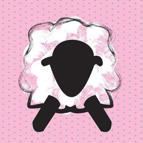 Pink Borrego