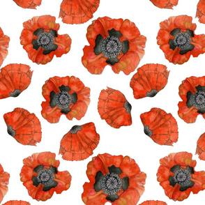 Poppy_Fabric