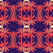 Red Plumeria