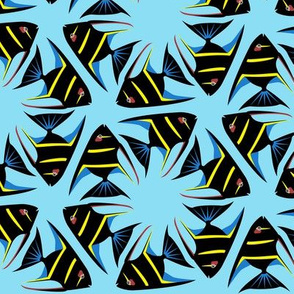 Geometric Angelfish - Black with Yellow Stripes