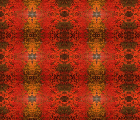 IMG_0078 fabric by amywadland on Spoonflower - custom fabric
