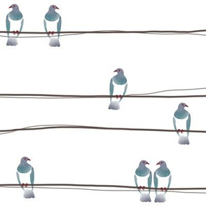 Watercolour Kereru on a wire