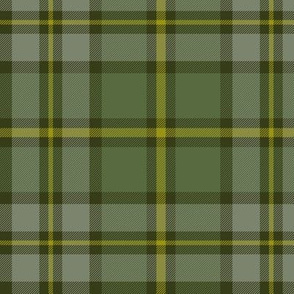 "Cape Breton tartan, 6"" weathered colors"