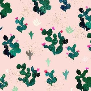 Cactus - blush