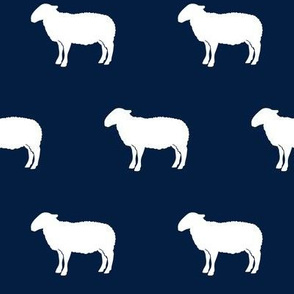 sheep on navy