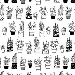 outline cacti 3