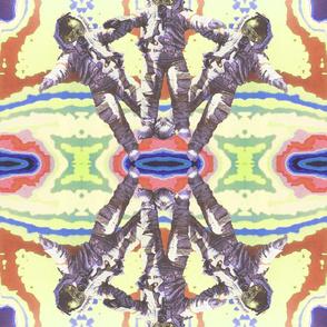 Kaleidoscope Astro