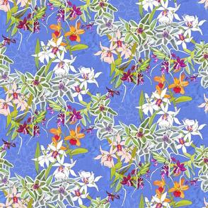 Orchid Jungle I Cerulean 400