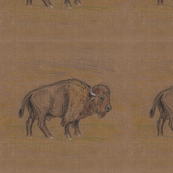 Bison Buffalo for Pillows