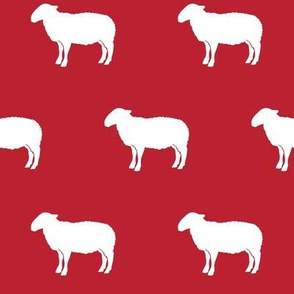 sheep on red