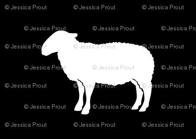 sheep on black