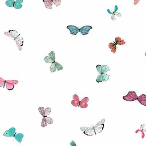 Brigit butterflies colorful