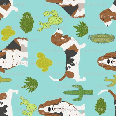 basset hound mint cactus sweet pet dog summer tropical trendy design plants for basset hound owners