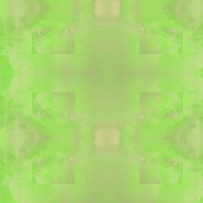 Sea-Dragons-green-bg