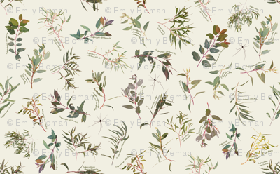 Eucalyptus foliage collection on Neutral f1efe2
