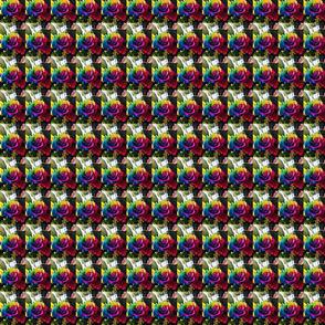 Colorful_rose-ed
