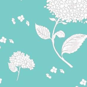 White hydrangeas on blue background