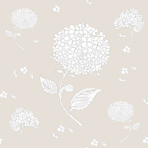 Floating Hydrangea Flowers on Beige
