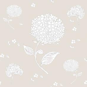 Floating Hydrangea Flowers on Beige