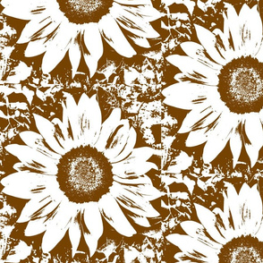 Brown_and_white_sunflower-ch-ch-ch