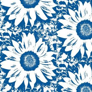 dark blue_and_white_sunflower-ch
