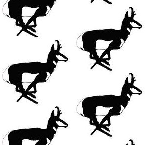 Pronghorn Antelope Black and White