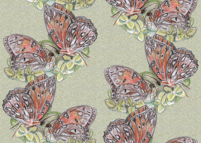 Rrgulf_fritillary_butterfly_kisses_preview