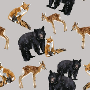 Bear + Fawn + Fox