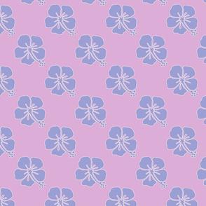 Sweet Tiny Hibiscus