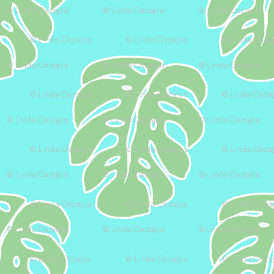 Aqua Monstera leaf
