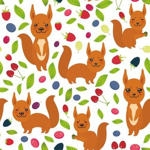 red squirrel, Cherry Strawberry Raspberry Blackberry Blueberry Cranberry Cowberry Goji Grape on white background.