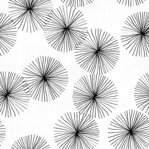 Dandelions White & Black by Friztin