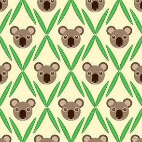 06727732 : koala argyle