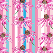 Purple coneflower on stripes