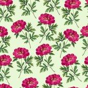 Rrvintage_floral_4_shop_thumb