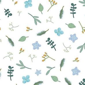 pastel plants