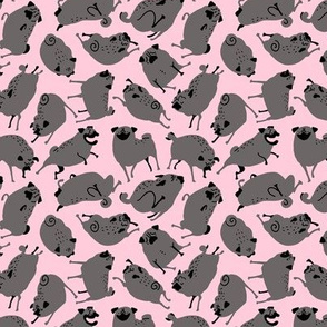 """1.25-2"""" Black Pugs in Action - pink"""